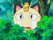 EP522 Meowth conmovido
