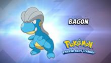 EP877 Cuál es este Pokémon