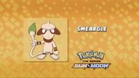 EP960 Cuál es este Pokémon