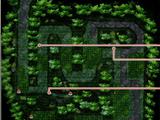 Bosque de Novarte