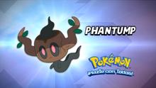 EP920 Cuál es este Pokémon
