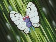 EP008 Butterfree de Ash