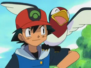 EP280 Taillow y Ash