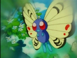 EP096 Butterfree