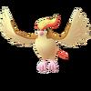 Pidgeot GO