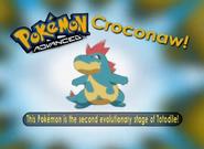 EP291 Pokémon