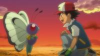 EP792 Recuerdo de Butterfree y Ash