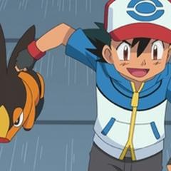 Tepig entrenando con Ash.