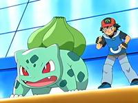 EP467 Bulbasaur junto a Ash