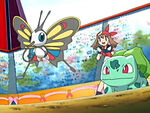 EP400 Beautifly y Bulbasaur de May