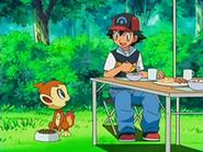 EP522 Chimchar sorprendido por el tratamiento de Ash y sus amigos