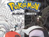 Tomo 20 (Pokémon Black and White)