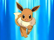EP468 Eevee de May