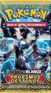 Next Destinies (TCG) Booster 4