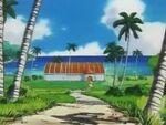 EP087 Gimnasio Pokémon de Isla Mikan