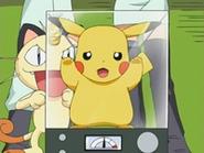 EP470 Pikachu encerrado en una jaula