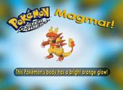 EP213 Pokémon