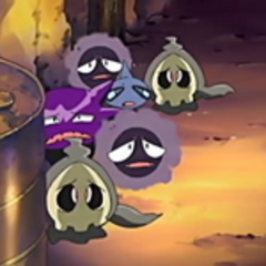 EP423 Pokémon fantasma escondidos.png