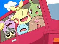 EP465 Pokémon de Matt