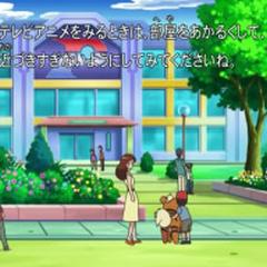 Centro Pokémon de la isla.
