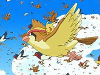 EP482 Pikachu volando con Pidgeot