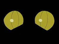 EP533 Ojos de Gliscor