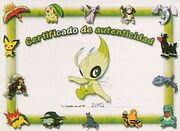 Scan Celebi tour certificado