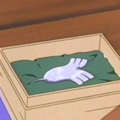 El ala plateada se encontraba en una caja de madera dentro del cofre, tal y como el bisabuelo de Luka siempre aseguró.