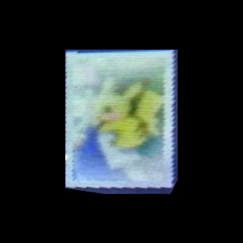 Imagen anterior ampliada y enderezada.