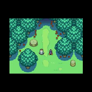 Entrada al Bosque Tétrico.