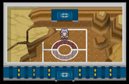 Liga Pokémon (Sinnoh) Sala Gaia Pt