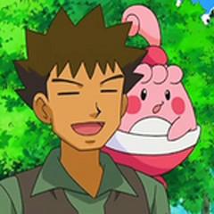 Happiny y Brock.