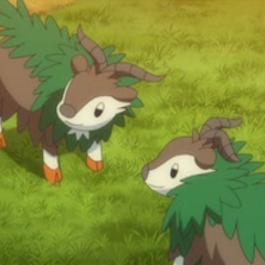 EP857 Skiddo(2).png