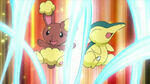 EP643 Buneary y Cyndaquil actuando
