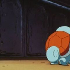 P01 Squirtle Vs Squirtle.jpg