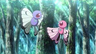 San Valentín Pokémon Amor a primer..