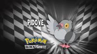 EP661 Quien es ese pokemon