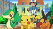 EP715 Snivy,Pikachu y Tepig