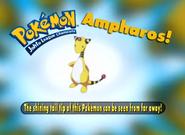 EP211 Pokémon