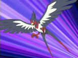 EP356 Swellow