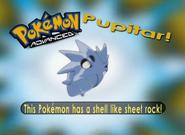 EP292 Pokémon