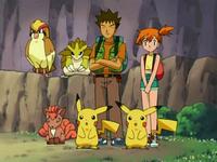 EE01 Brock Misty y Pikachu Vulpix Sandslash Pidgeot clones