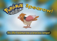 EP222 Pokémon