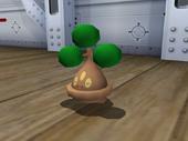 Bonsly en Pokémon XD