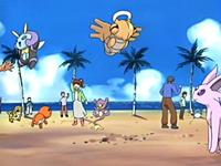 EP398 Coordinadores Pokémon