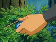 EP433 Brock recogiendo una baya