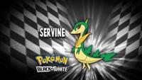 EP670 Quién es ese Pokémon