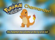 EP221 Pokémon