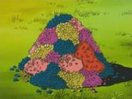 EP476 Montaña de bayas (2)