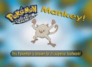 EP225 Pokémon